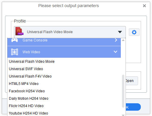 Set FLV as output format