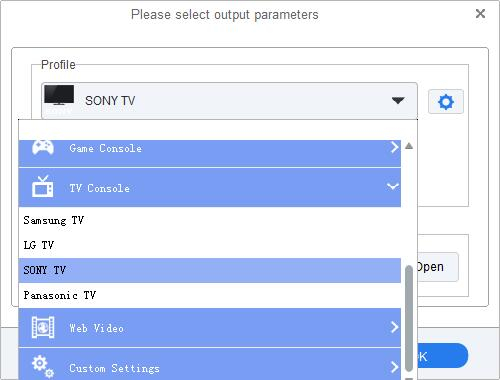 Set Sony TV as output format